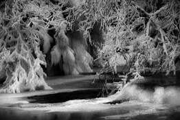 Frost (Frozen) #2 by Per Erik Langaanes