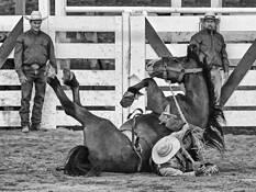 Rider Down by William West Jr.