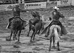 Between Horses by William West Jr.