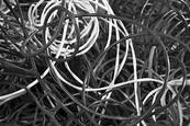 Insulated Wire 2 by Dave Sova