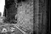 Brick Wall by Wess Brown