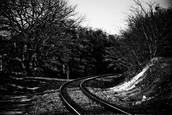 Train Tracks #2 by Darryl Dalton