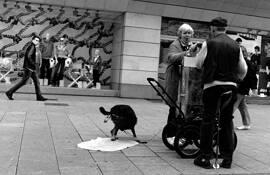 Street Vendor by David Lykes Keenan