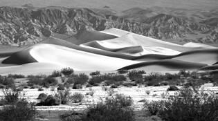Desert Contrast by Stefini Borcoman