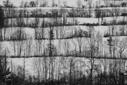 Rolling Hills by Seyda Deligonul