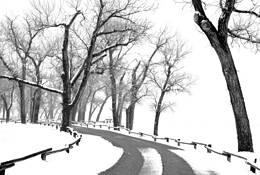 Spring Snow by Rodney Gene Mahaffey