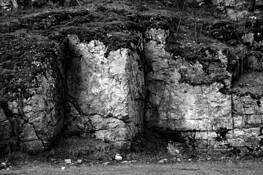 Three Trolls by Yash Holbrook