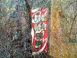 Coke in the Woods #8 by David Johns