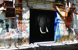 Farsafari Series - Elephant House by John Sargent