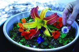 Quinoa Salad by Tristin Kroening