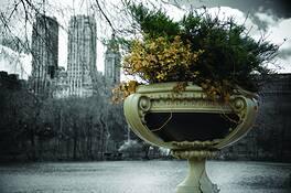 Copy of Central Park by David W. Jones