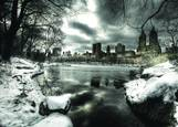 Central Park in Winter by Kenneth Ortiz