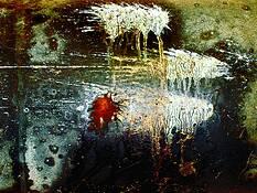 Wham Pow Splat #08 by Bert Ihlenfeld