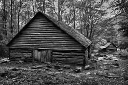 Ogle Cabins by Daniel Ruf