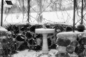 Winter Bird Bath by Virgil DiBiase