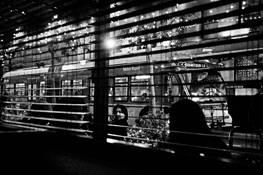 Through The Blinds by Sanford Davis