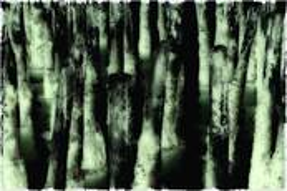 Breakwater by Robert Steffen