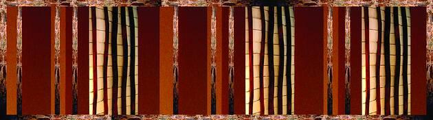 Amapa Wood by Joy Hamilton