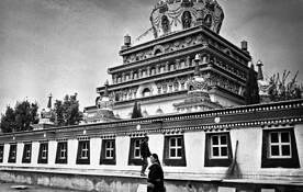 Pagoda by Cory Zaradur