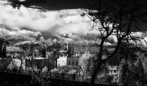 Enchanting by Gray Hawn