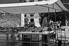 Fish Market by Seta Karabadjian