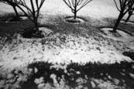 Circles by Eduardo Bermudez