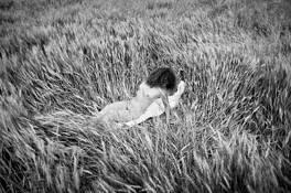 Wheat Field by Doyle E. Saddler