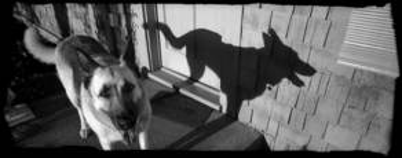 Kiska by Deon Reynolds