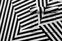 Zebra by Diane DeQuevedo