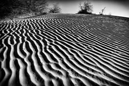 Dunes by Aaron Marko