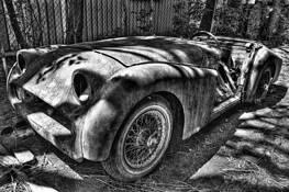 Triumph TR3 by Steve Siegel