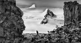 Antarctica 2 by Martyn Lucas