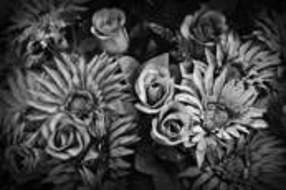 Fleurs pour-delà by Patricia Sweeney