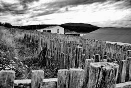 Patagonia 1 by Nataly Rader