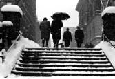 Snow on Steps by Michael Seif
