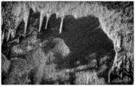 Sandpattern6 by Robert Miller