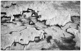 Sandpattern7 by Robert Miller