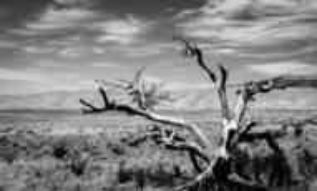 A Harsh Land by Brendan T. Kelly