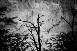 El Calafate 1 by Nataly Rader
