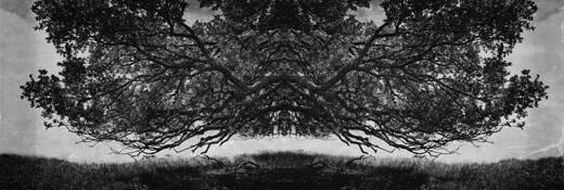 Enigma_Carmel by Steve Wolowitz