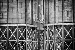 Grain #10 by Allan R. Lamb