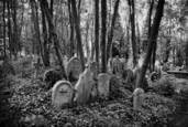 Cemetery by Brian K. Edwards