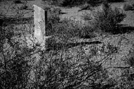 Bull Frog Cemetery 6 by Joel Kubicki Jr.