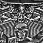 The Skull by Ron Hugo