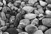 Beach Stones by Wendy Broekx
