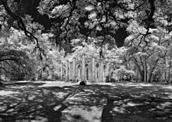 Primitive Sanctuary by Steve Zigler