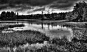 Raquette Lake by David Patterson