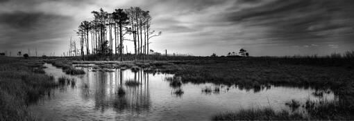 Hoopers Island by Jon Meyer