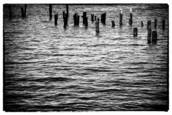 Pilings by Norman T. Robbins