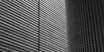 Linear Light by Jon Mills